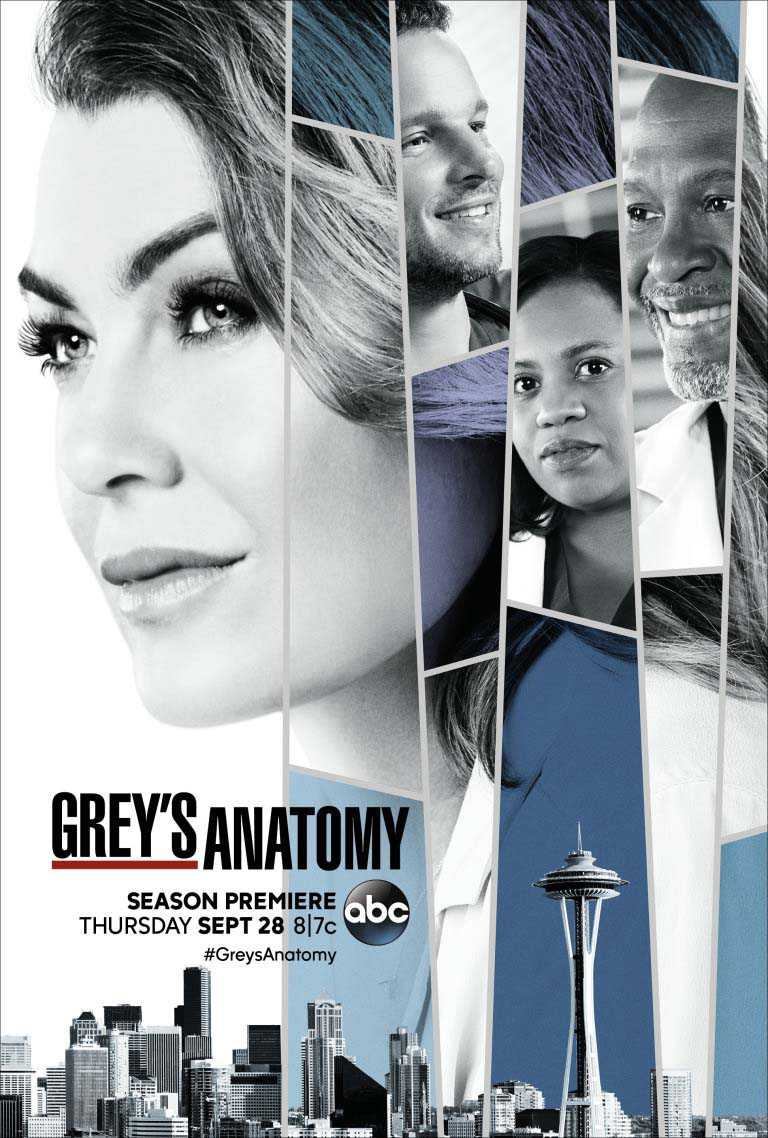 Grey's Anatomy – Saison 14